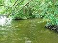 Nonnenbach-Muendung-27-VIII-2007-20.jpg