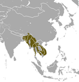 Northern Pig-tailed Macaque area.png