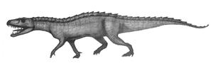 Nundasuchus - Pencil sketch of Nundasuchus Songeaensis.