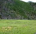 Obsidian Creek Valley (Yellowstone, Wyoming, USA) 2 (46091801404).jpg