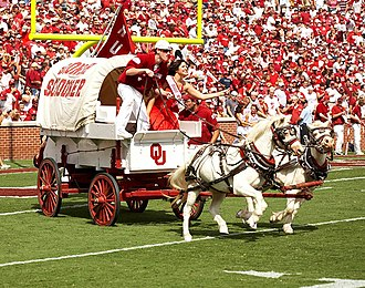 Boomer and Sooner - Boomer and Sooner pulling the Sooner Schooner.