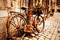 Old Bicycle (4743079171).jpg