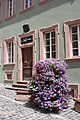 Oppenheim, the house 13 Merianstraße.jpg