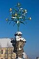 Oranienbaum orange tree.jpg