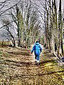 Orchard Head Lane, Pontefract (geograph 3369253).jpg