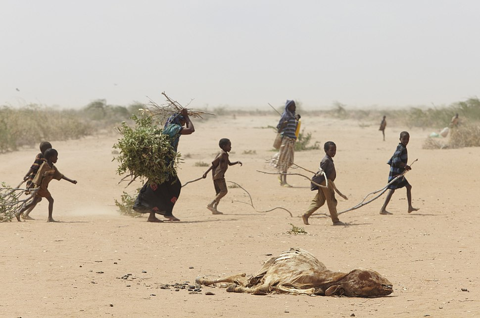 Oxfam East Africa - A family gathers sticks and branches for firewood
