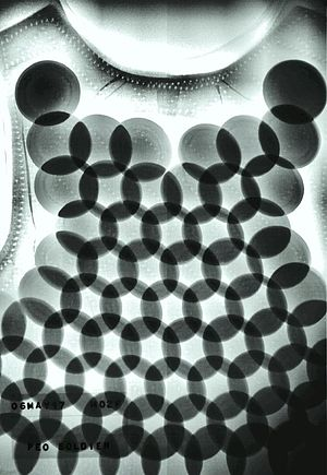 X-ray of Dragon skin body armor