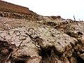 Pachacamac (Peru) (14895544038).jpg