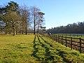 Paddocks, Ewelme Park - geograph.org.uk - 1082197.jpg