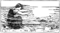 Page 35 illustration in English Fairy Tales.png