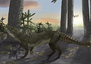 <i>Pakasuchus</i> genus of crocodylomorphs