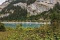 Panixersee (Lag da Pigniu) boven Andiast. (d.j.b.) 02.jpg