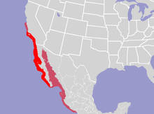 Main range is from Southern California to the southern tip of Baja California; peripheral range extends slightly further north to Central California, and includes the Gulf of California, and the western coast of Mexico south to the Gulf of Tehuantepec.