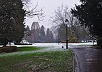 Parc Seny on a snowy day, entering from Rue Charles Lemaire (Auderghem, Belgium) - grass.jpg