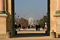 Paris Eye, Down the Jardin des Tuileries towards Place de la Concorde, 2009.jpg