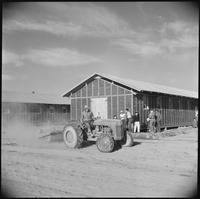 Parker, Arizona. An evacuee smooths street with grading equipment at the relocation center where ev . . . - NARA - 538567.tif