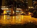 Parque Santander noche 2.JPG