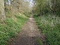 Path from Ringsfield Road - geograph.org.uk - 978173.jpg