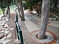 Pathway in Haifa - Stierch.jpg