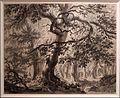Paulus van liender, veduta di foresta con alti alberi e figure presso un ruscello, 1790 ca., carboncino e sfumature grigie.jpg