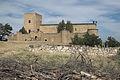 Pedraza Castillo 344.jpg