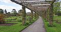 Pergola - Kew Gardens.jpg
