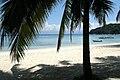 Perhentian Islands, Malaysia, Palms on the beach.jpg