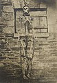 Photograph of the skeleton and chains used to gibbet a man convicted of murder and hung at Goulburn (cropped).jpg
