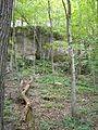Pictured-Rocks-County-Park Jones-County,-Iowa Saturday,-August-20,-2011 a.jpg