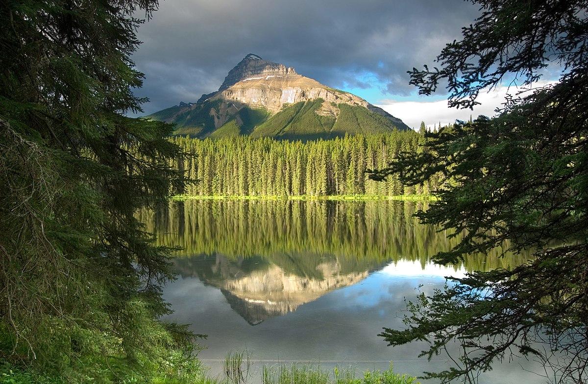 Pilot Mountain (Alberta) - Wikipedia