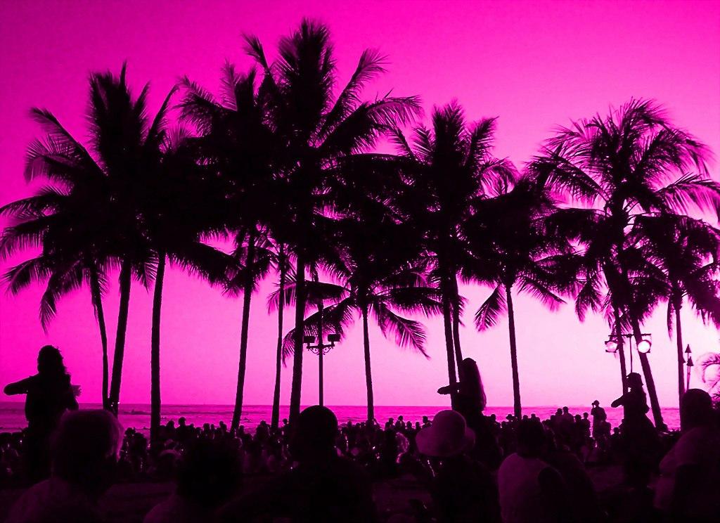 Palm Beach Hawaii