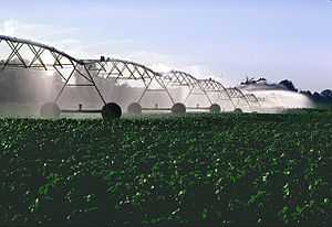 Center pivot irrigation - Pivot irrigation in progress on a cotton farm.