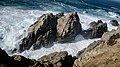 Point Lobos State Natural Reserve 1 18 19 (46087733064).jpg