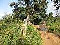 Polonnaruwa, Sri Lanka - panoramio (57).jpg