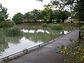 Pond for fishing, Radnor Park - geograph.org.uk - 1544788.jpg