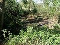 Pond next to Wayfarers walk - geograph.org.uk - 1269193.jpg