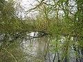 Pond north of Manor Lane - geograph.org.uk - 1805783.jpg