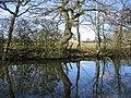 Pool at Highfield Farm - geograph.org.uk - 151863.jpg