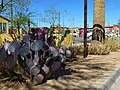 Por Vida Gallery from 16th Street and East Windsor Avenue - Tour - McDowell Gateway 17th St and McDowell to 16th Street and E Cyprus, 2013 Santa Rita Prickly Pear in Foreground - panoramio.jpg