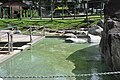 Poring Hot Springs- overview (11966998755).jpg