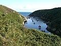Porth Clais - panoramio (1).jpg