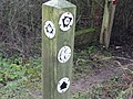 Post at joining of Jurassic Way with the Midshires and Macmillan Ways - geograph.org.uk - 307178.jpg