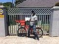 Postman in Hermanus 2017.jpg