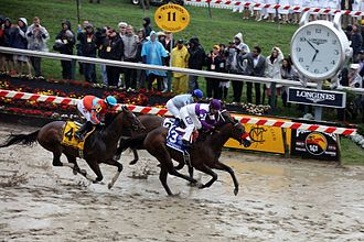 Nyquist (horse) - Nyquist led early on in the Preakness before finishing third