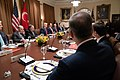 President Trump Meets with the President of Turkey (49061344791).jpg