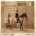 Prince Leopold, Duke of Brabant (1859-1869).jpg