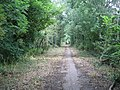 Public Bridleway to Thickthorn Wood and Ashow - geograph.org.uk - 31891.jpg