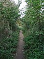Public footpath - geograph.org.uk - 976766.jpg