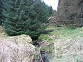 Pundershaw Burn - geograph.org.uk - 1235158.jpg