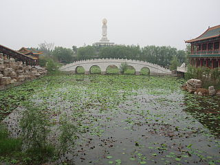 Lincheng County County in Hebei, Peoples Republic of China